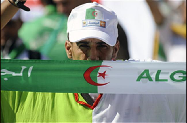 Violences en marge du match Belgique-Algérie : les personnes interpellées finalement laissées libres