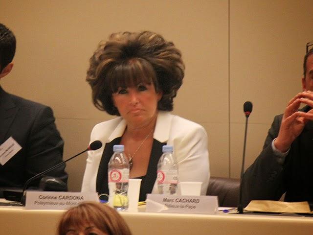Municipales 2020 : Corinne Cardona, seule candidate, réélue