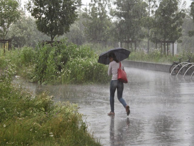 Météo à Lyon : pluie, neige, orage au programme du week-end