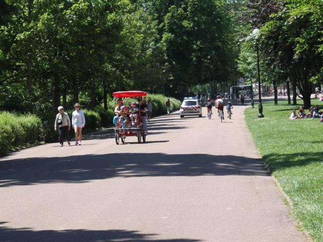 Le gérant des promenades de poneys du parc de la Tête d'Or  en garde à vue pour activités illégales