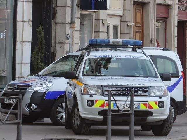 Lyon : l'élagueur chute de plus de cinq mètres