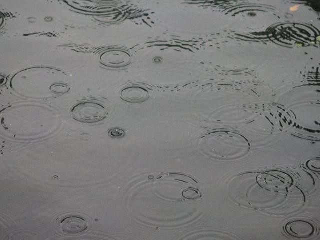 Météo à Lyon : la pluie fera de la résistance ce week-end