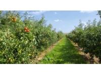 Près de 4 200 exploitations agricoles vont être recensées en Rhône-Alpes