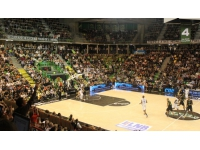 L'ASVEL trébuche en Eurocoupe face à Dijon