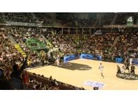 ASVEL : première sortie européenne pour la Green Team new look