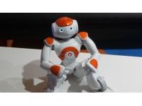 Première édition des Robot Times Connect à Lyon ce mardi