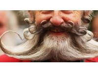 Lyon : le poil dans tous ses états au Parc de la Tête d'Or