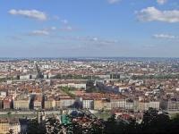 Des brebis et des chevaux à Lyon