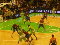 Eurocup : l'ASVEL reçoit les Belges d'Ostende