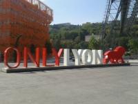 La statue Only Lyon s'installe à la Confluence