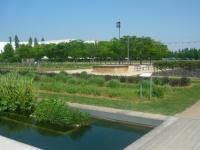 Un immense jardin d'enfants au coeur de Lyon