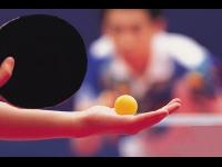 Villeurbanne accueille le Top 12 de ping pong