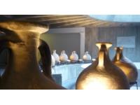 Lyon : le musée gallo-romain se réinvente