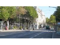 Le 7e arrondissement de Lyon fête ses 100 ans