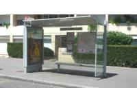Lyon : les terreurs de l'arrêt de bus prises la main dans le sac