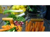 Rhône : 230 magasins mobilisés pour la collecte de la banque alimentaire