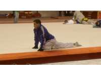 Très mauvais bilan pour les Rhodaniens de l'équipe de gymnastique française