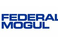 Une grève chez Fédéral Mogul à Saint-Priest
