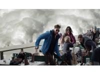 Oscars 2015 : les critiques américains choqués par l'absence de nomination pour le film Rhône-Alpes Cinéma Snow Therapy