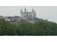Alertes polliniques dans le Rhône