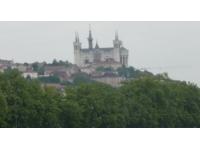Nouvelles alertes polliniques dans le Rhône