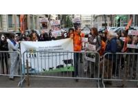 Lyon : manifestation contre l'élevage industriel mardi