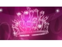 17 prétendantes pour un titre de Miss Lyon