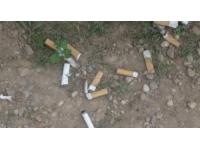 Les mégots de cigarette irritent les piétons de Villeurbanne