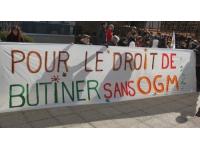 Une marche contre Monsanto à Bron ce samedi