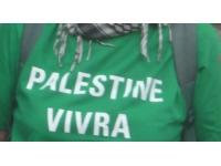 Des dizaines de personnes à l'initiative d'un flashmob pour la Palestine