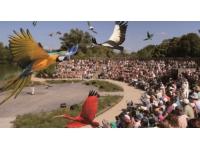 Le Parc des Oiseaux veut augmenter ses échanges d'animaux avec le monde entier