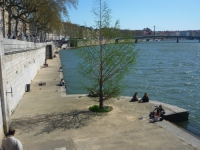 Le conseil départemental de l'environnement donne un avis favorable aux rives de Saône