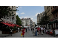 Journée internationale Sans Viande : 100 repas végétariens distribués à Lyon