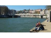 55 épaves automobiles vont rester dans la Saône