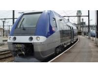 Le train Tours-Lyon bloqué deux heures par un bucheron maladroit