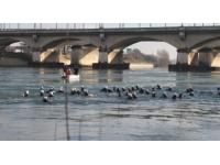 La 34e Traversée de Lyon à la nage remportée en moins de 45 minutes !