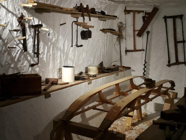 Le Musée des Confluences à l'heure de l'Antarctique