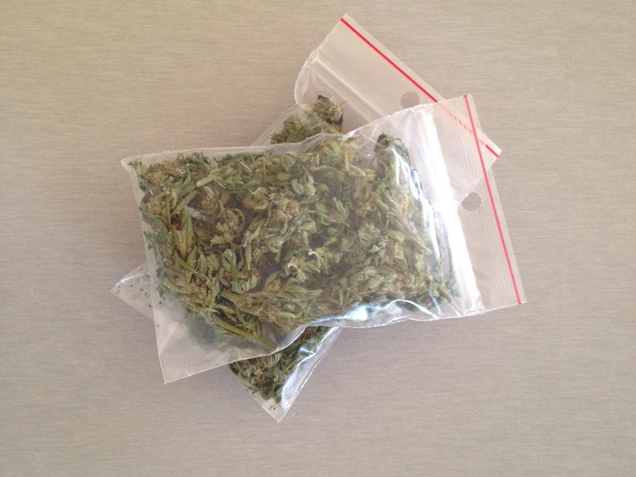 Vaulx En Velin Son Allocation Chmage Part Dans Le Cannabis Il Deale Pour Ses Autres Dpenses