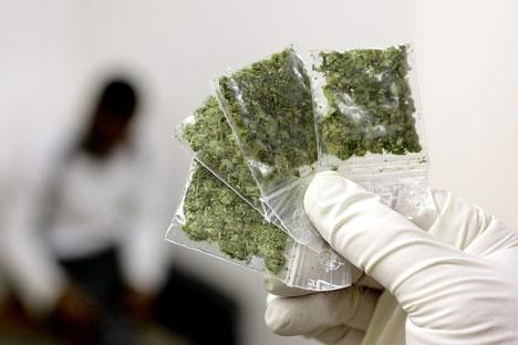 Il achète pour 80 euros de pelouse, croyant se procurer de la drogue