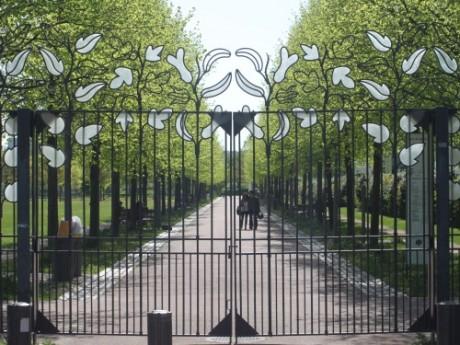 Lyon : le festival 6e continent annulé
