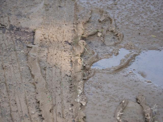 Une partie du Rhône touchée par des inondations : des milliers d'euros de dégâts