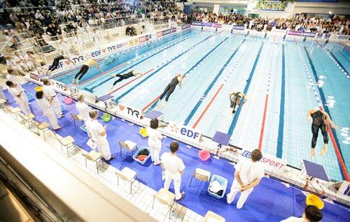 Trois Lyonnais en lice pour les championnats d'Europe de natation, en Hongrie