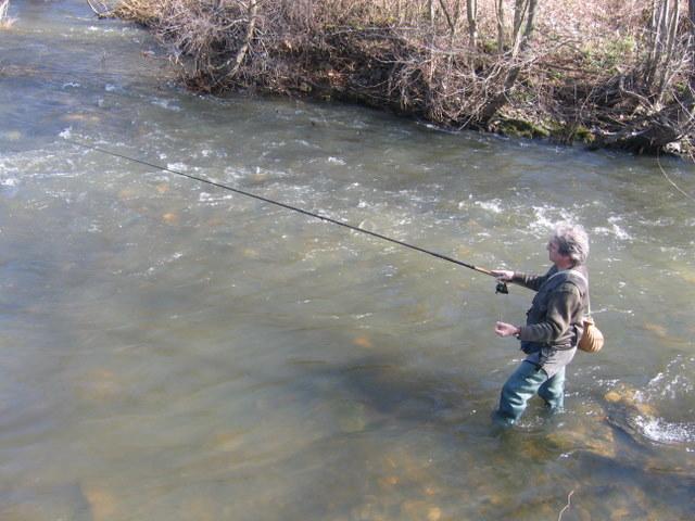 Nouvelles interdictions de consommer du poisson pêché dans les cours d'eau de la région