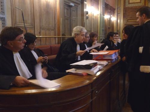 Les avocats lyonnais devant le Conseil constitutionnel