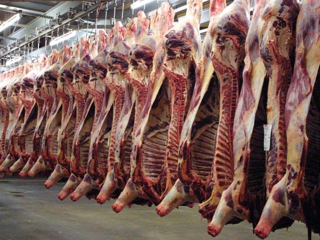 Des restaurants de Bourg-en-Bresse impliqués dans un trafic de viande