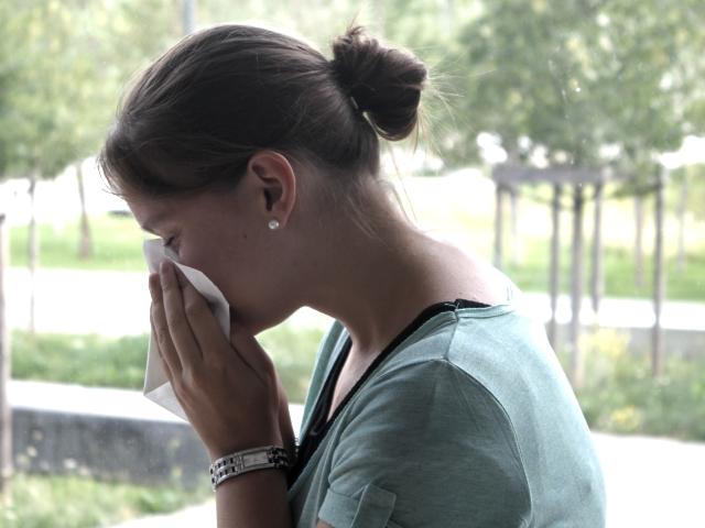 Allergies : les pollens d'ambroisie arrivent à Lyon