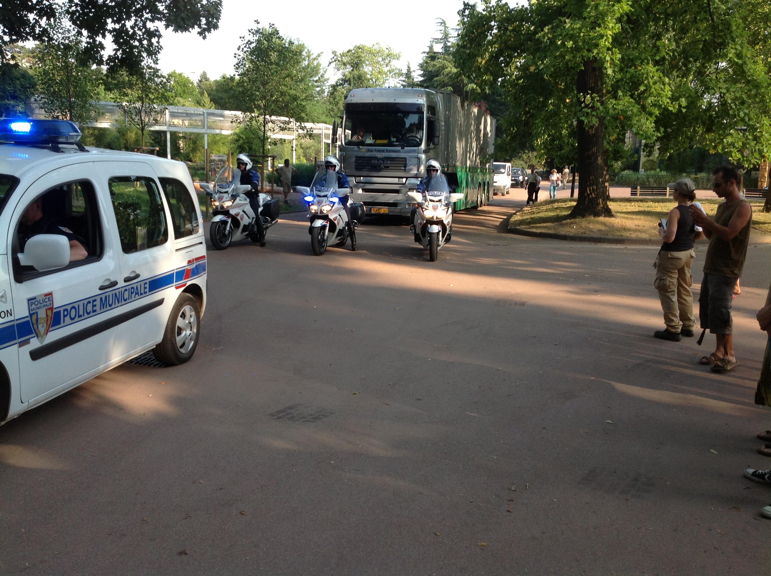 Le convoi transportant Baby et Népal quitte le parc de la Tête d'Or - LyonMag