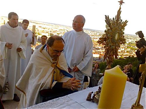 Affluence record pour la Fête du diocèse à Lyon