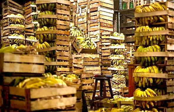 Corbas : les bananes étaient en fait... de la cocaïne