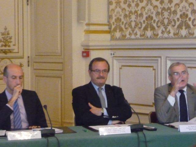Changement climatique: une baisse de 30% du niveau du Rhône d'ici à 2050 ?